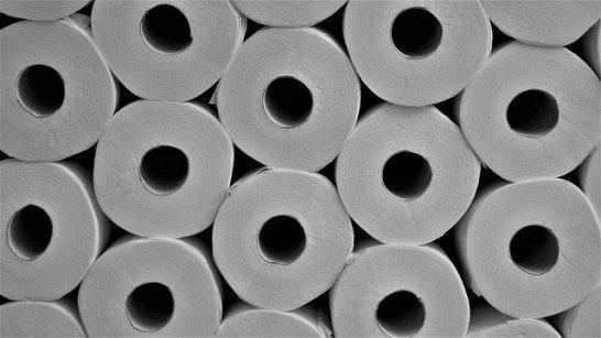 toilet-paper-4958068_640