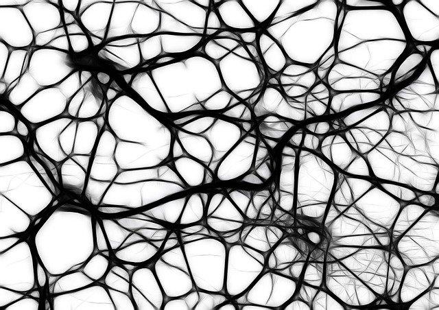 mitos-cerebro-neurona